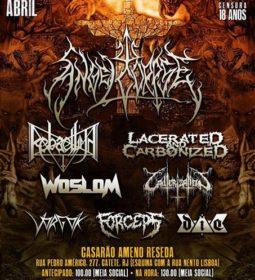 noclass-festival